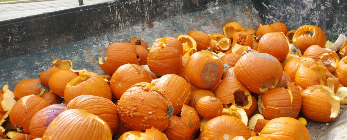 Dumpster full of pumpkins