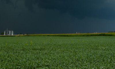 Dark clouds before a storm