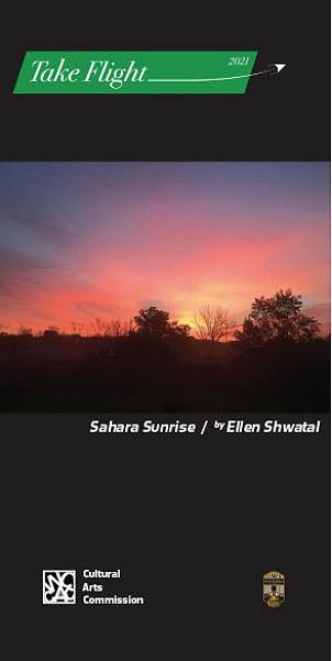 #14 Ellen Shwatal banner