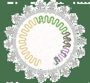 Graphic representation of virus mutation to represent Delta Variant