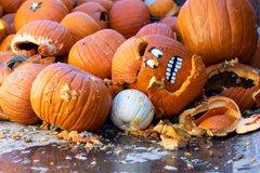 Pumpkin-Smash-Funny-Pic